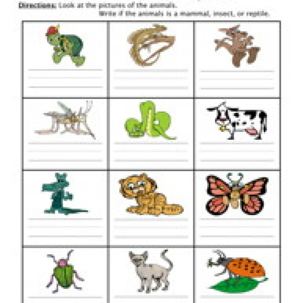 Reptile clipart animal classification #12