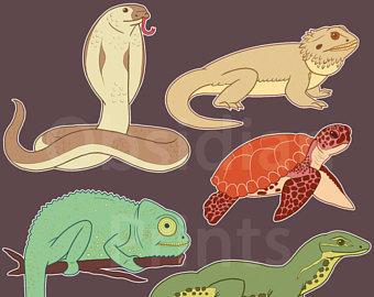 Reptile clipart sea snake #6