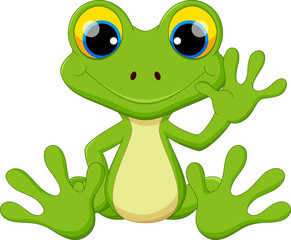 Reptile clipart tree frog #10
