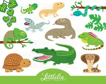 Reptile clipart turtle #13