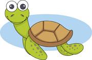 Reptile clipart turtle #15