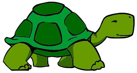 Reptile clipart turtle #14