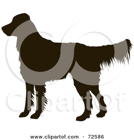 Retriever clipart pet animal #9