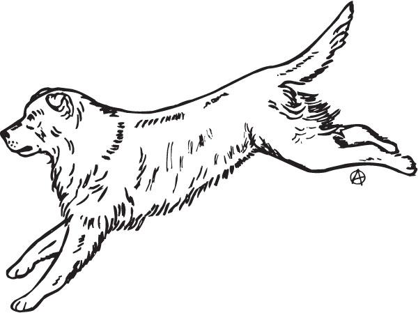 Retriever clipart pet animal #3
