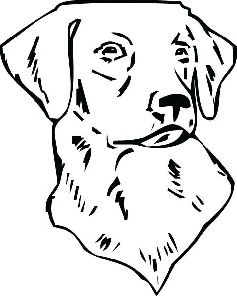 Retriever clipart pet animal #11