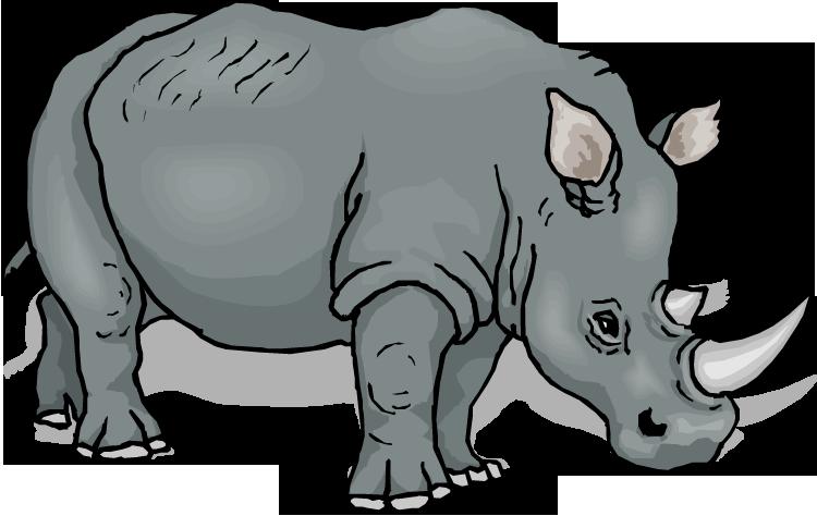Rhino clipart Clipart Big Clipart and Rhino