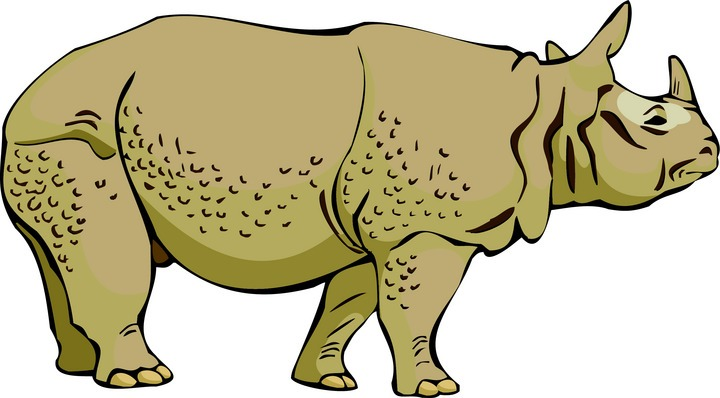Rhino clipart african animal #1