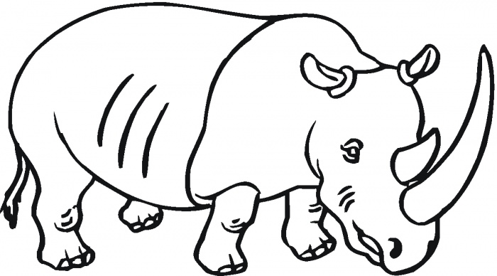 Drawn rhino coloring (700×388) rhinoceros coloring Pinterest coloring