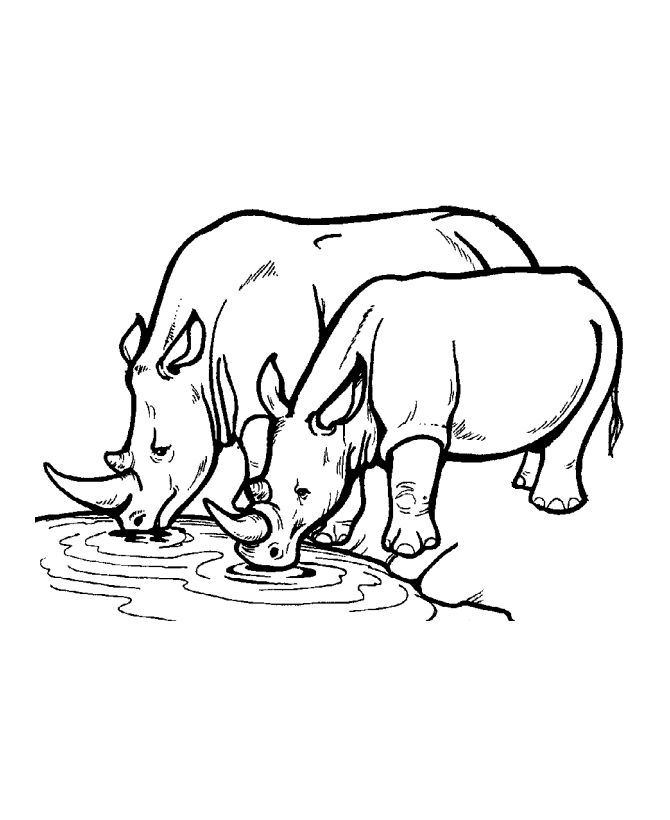 Rhino clipart coloring page #12