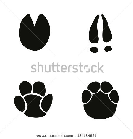 Footprint clipart realistic  Elephant sil Footprint Elephant