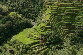 Rice Terrace clipart japanese rice Terraces (1) Banaue Rice JPG