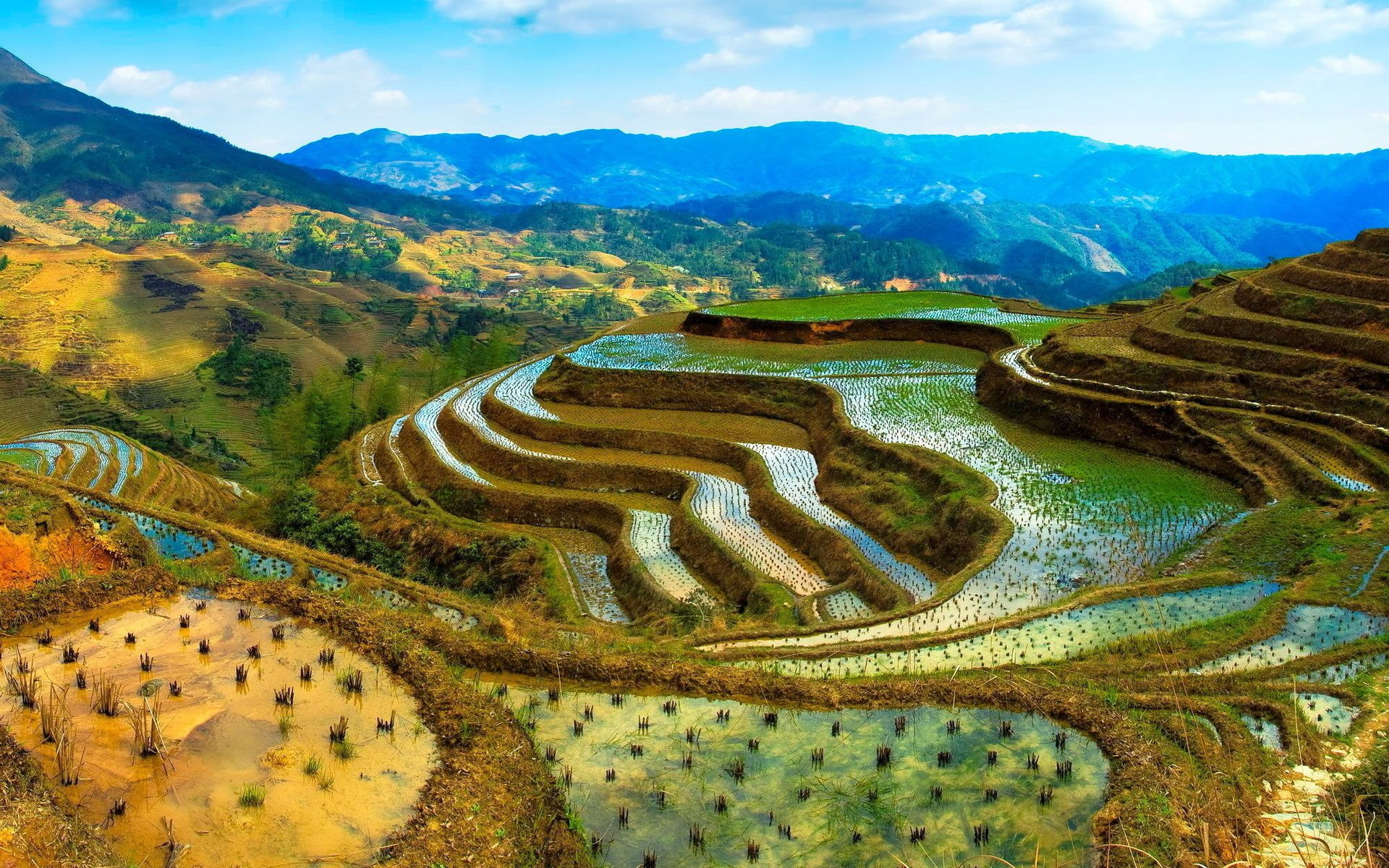 Rice Terrace clipart Biomes emaze Now In Future