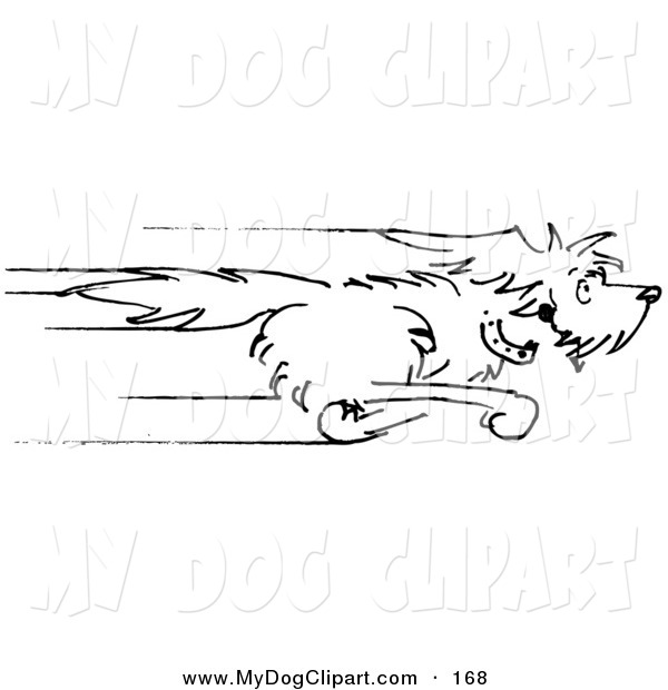 Right clipart dog running Photo#8 The Running Dog the
