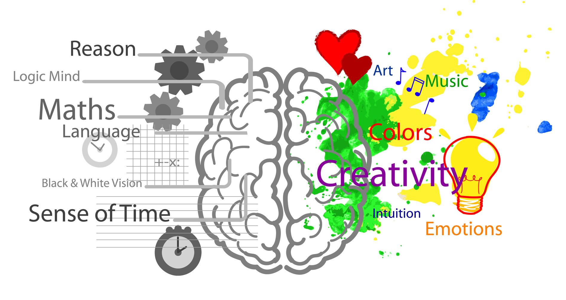 Right clipart left brain Brain Dominance Dominance Right Experiment