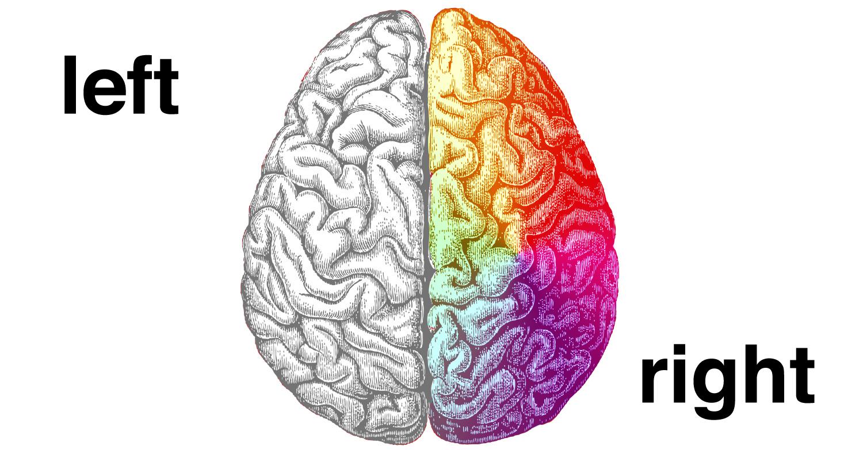 Right clipart left brain Creativity Here's az598155 Brain Only