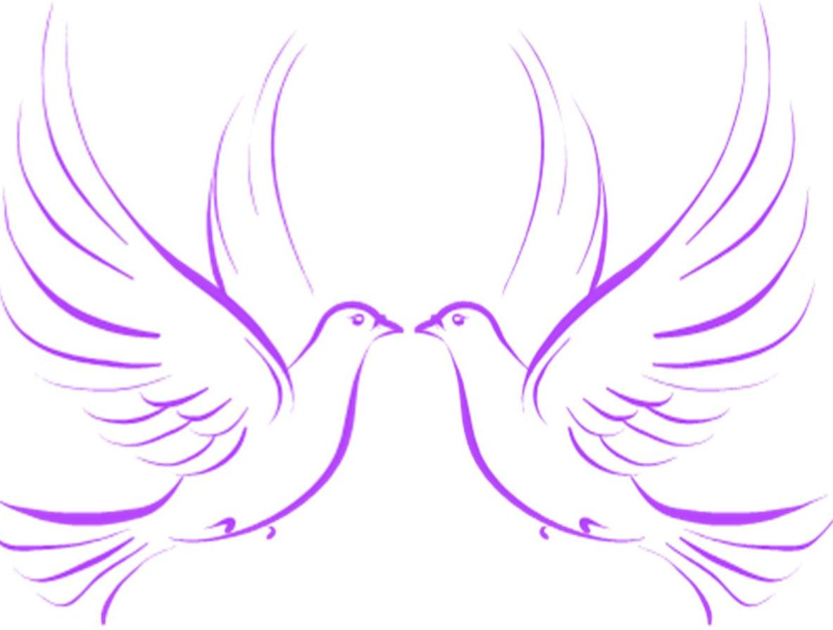 Drawn pigeon religious And christian wedding art Clip