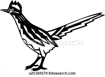 Roadrunner clipart black and white #7