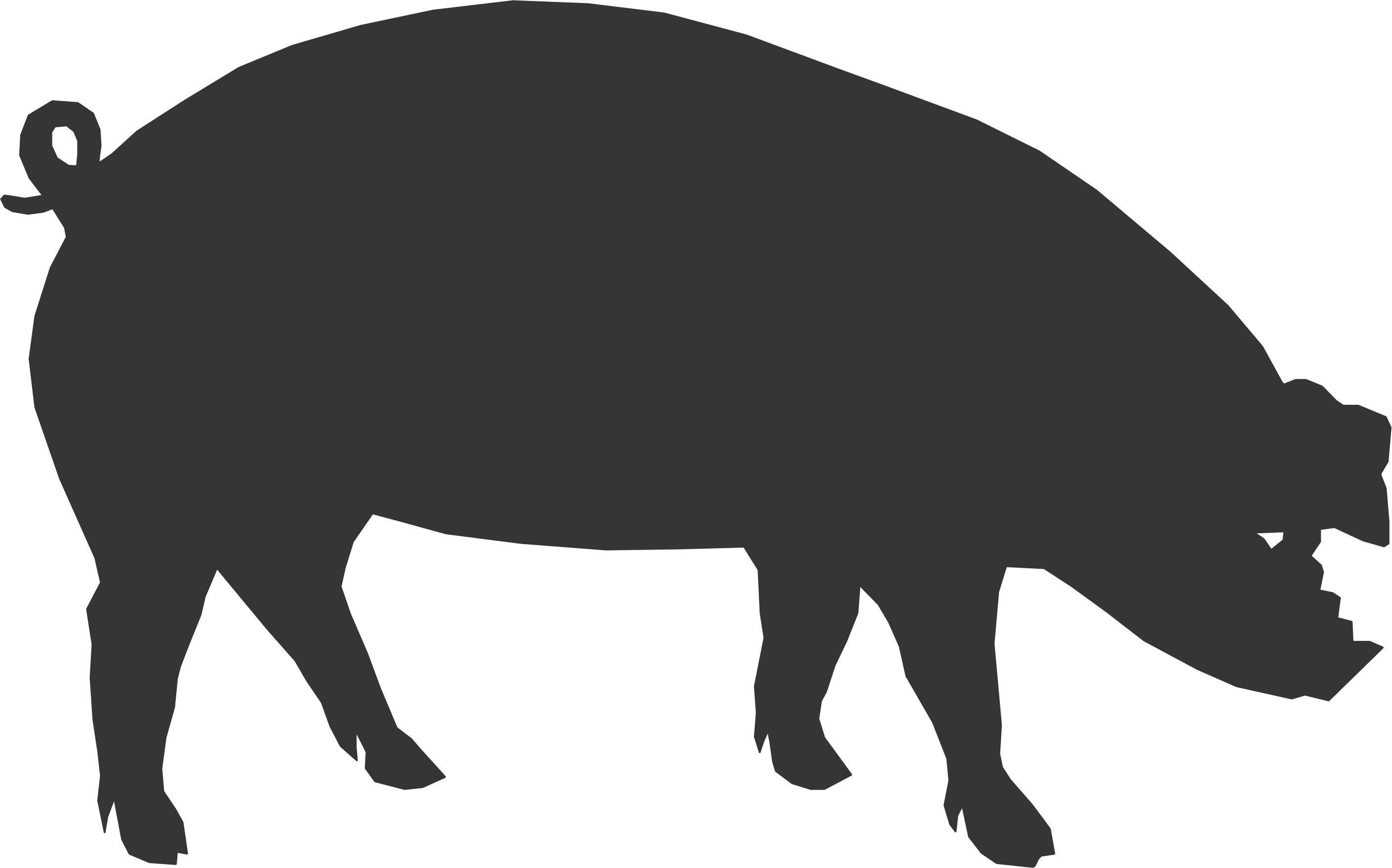 Shadow clipart pig #10