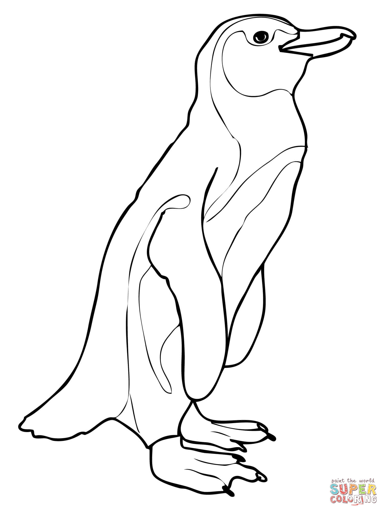 Penguin clipart realistic Free page Pages the coloring