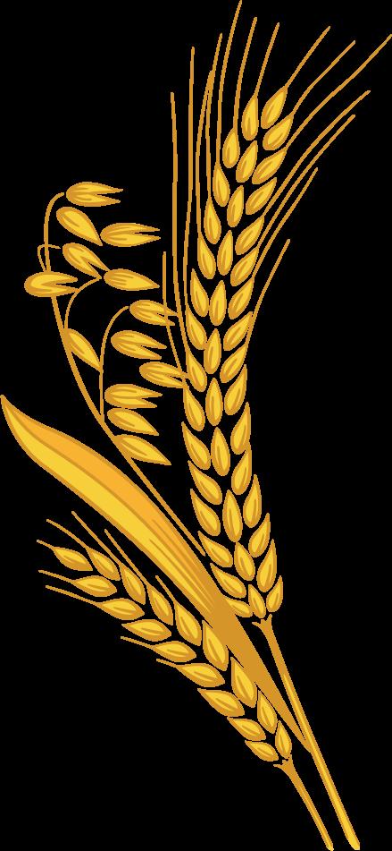Rolls clipart grain #9