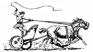 Rome clipart chariot racing Chariot Clip Art Download Chariot