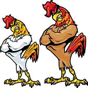 Drawn rooster angry Best collection Angry clipart Angry