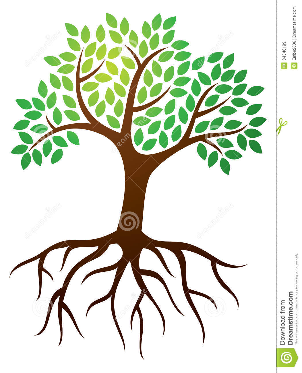 Roots clipart flower bud Trees Clipart With  Roots