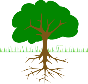 Roots clipart art Tree Clker clip Roots vector