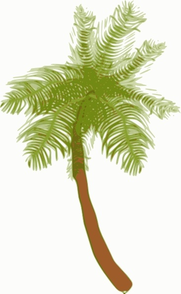 Roots clipart coconut (212 585 vector Black and