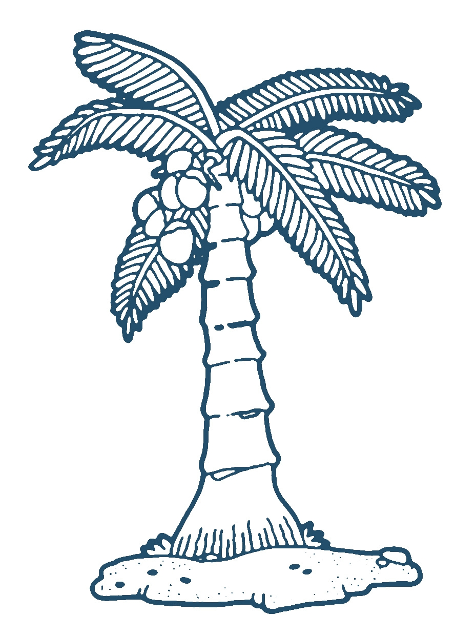 Roots clipart coconut Coconut Tree clipartsgram Coconut Tree