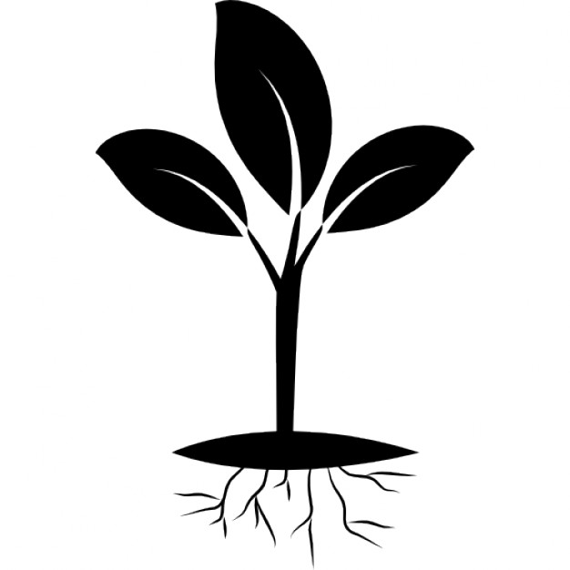 Roots clipart cute plant And Free root Download root