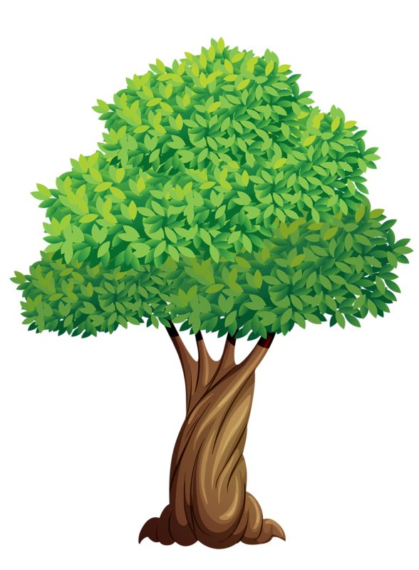 Wilderness clipart tress 237 CLIP TREES * on