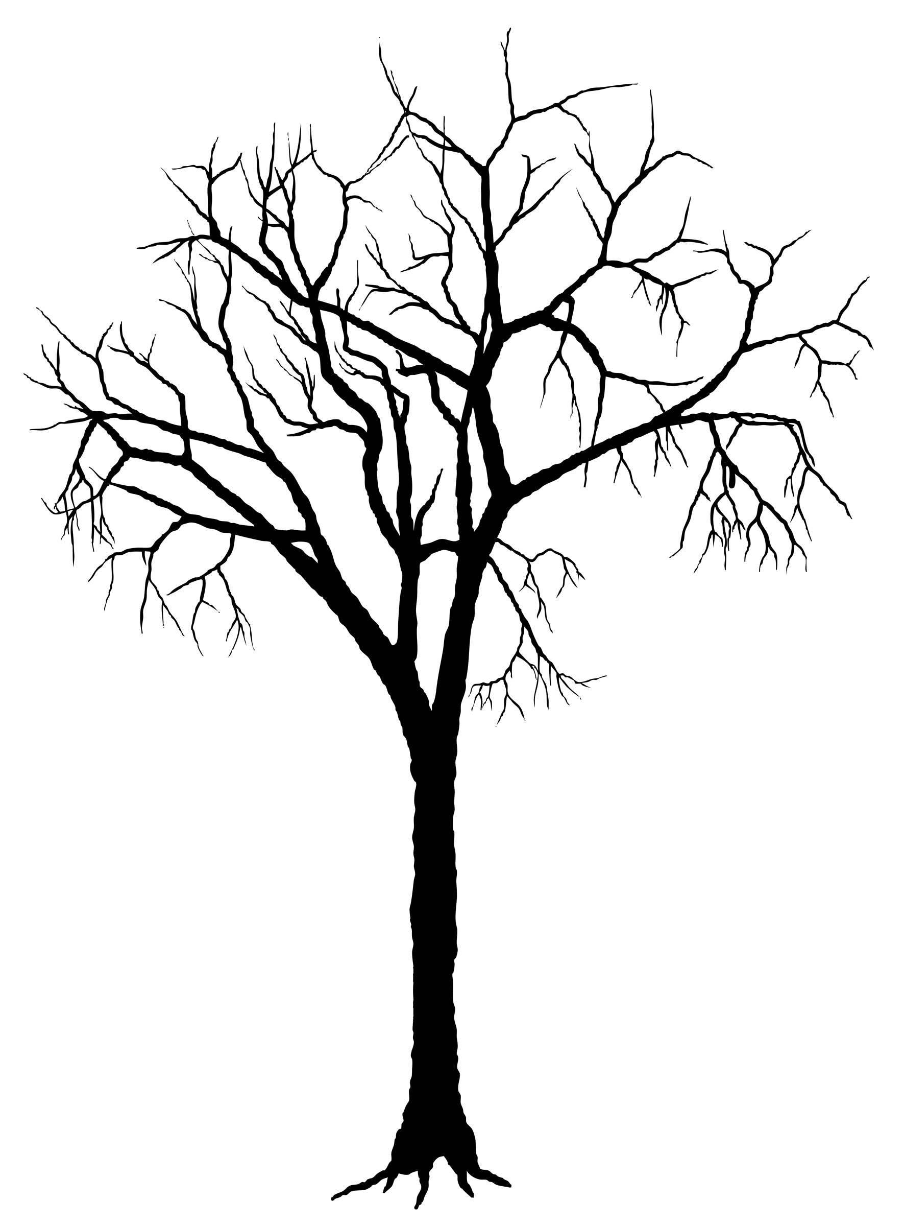 Spooky clipart branch Of Trees  ClipArt Of