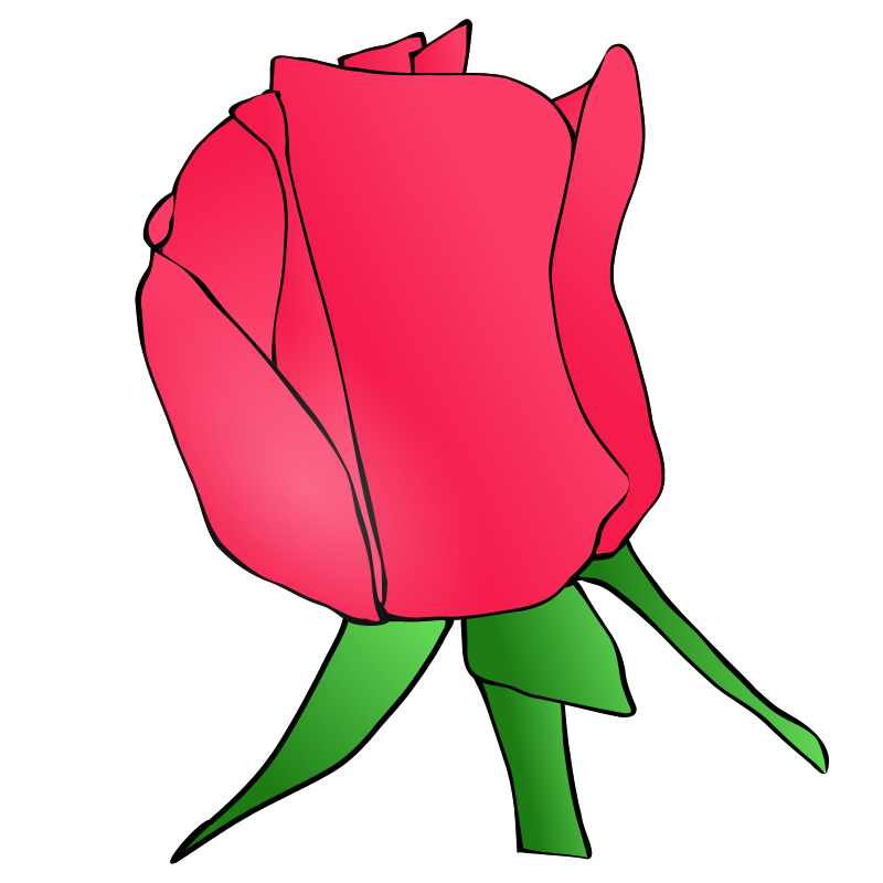 Roots clipart flower bud #7