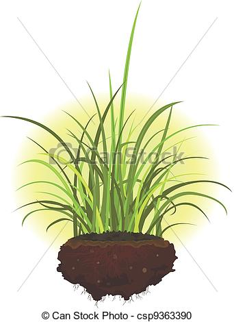 Roots clipart grass  of roots Stock roots