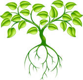 Roots clipart grass Images Clipart Roots roots%20clipart Clipart