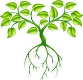 Roots clipart grass #3