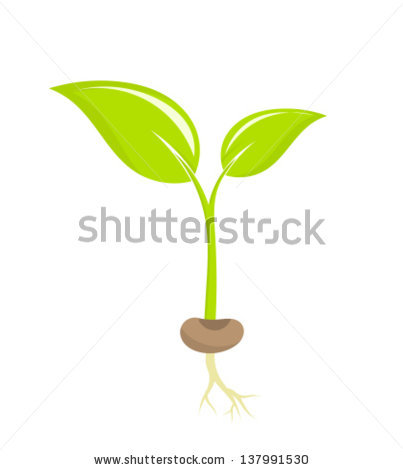 Seeds clipart little plant Vector Vector plant seedling vector