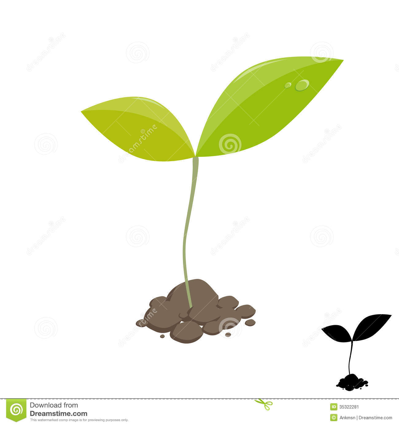 Plant clipart little plant Seed Plant Clipart Sprouting Stock