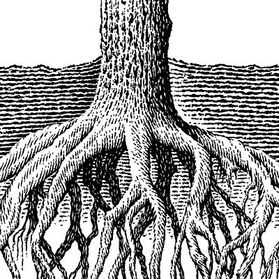 Drawn roots Your Clip Art Your Clip