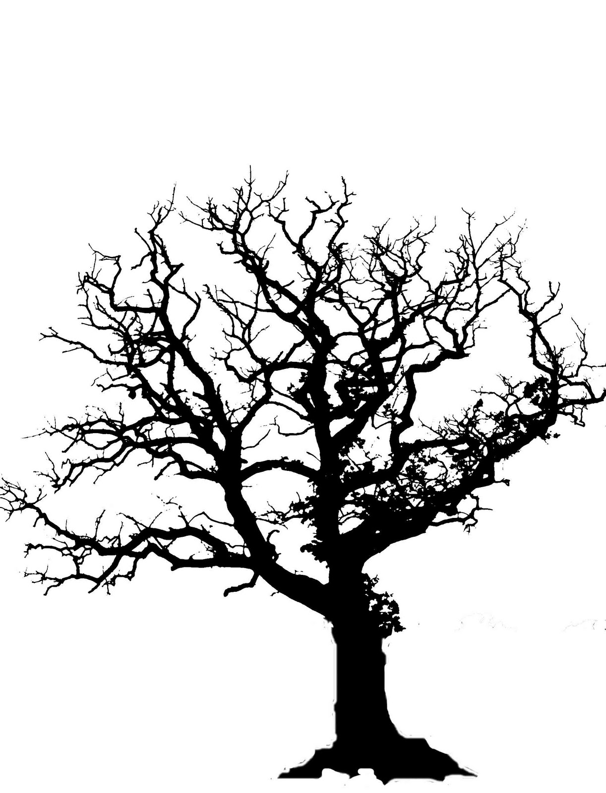 Barren clipart autumn tree Oak Free oak%20tree%20silhouette%20with%20roots Images Clipart