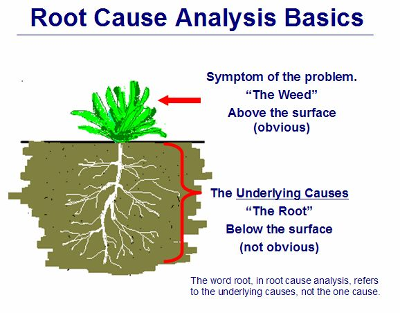 Roots clipart root cause #2