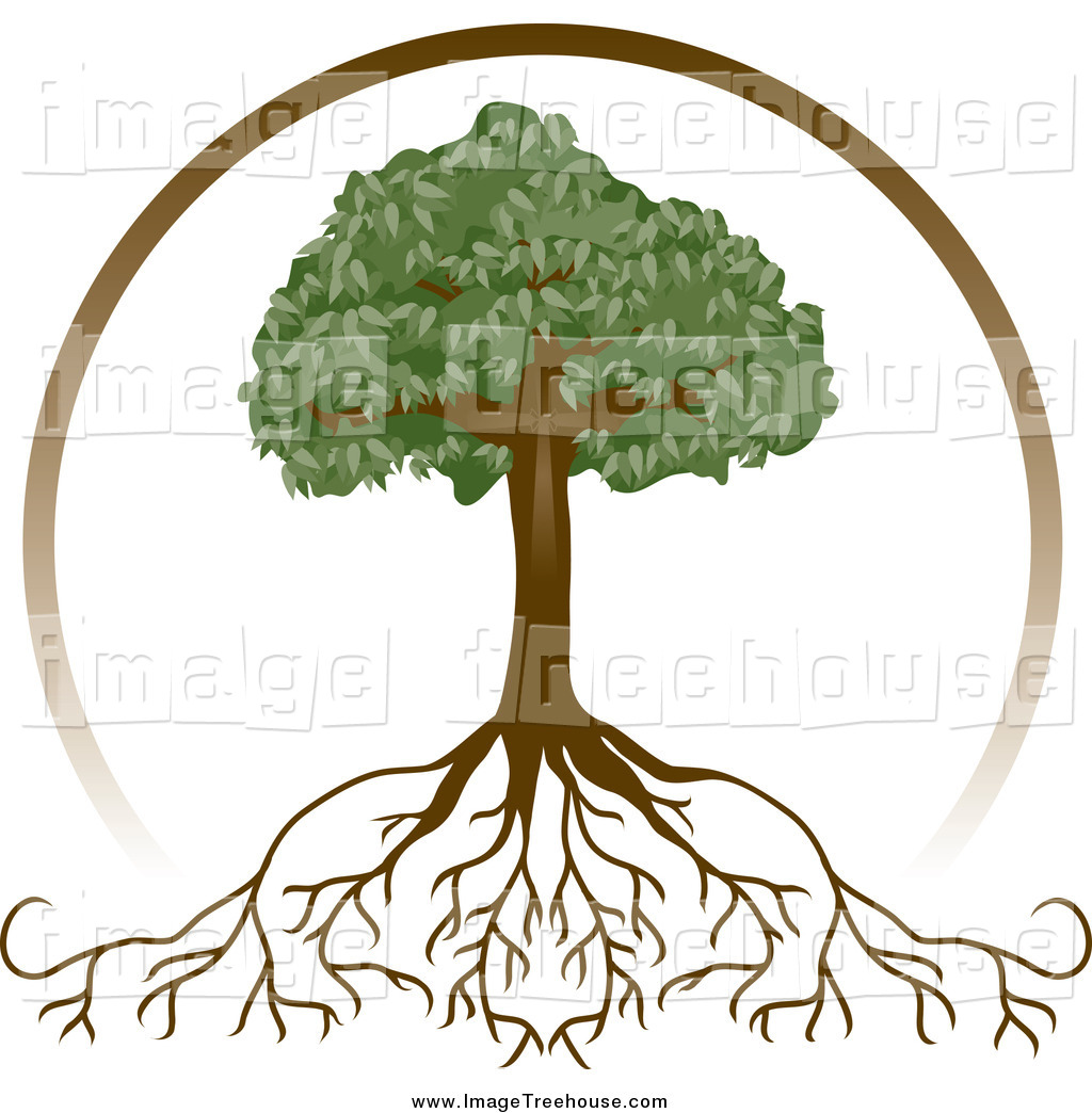 Roots clipart rooted tree #12