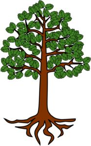 Roots clipart rooted tree #4
