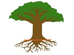 Roots clipart rooted tree #5