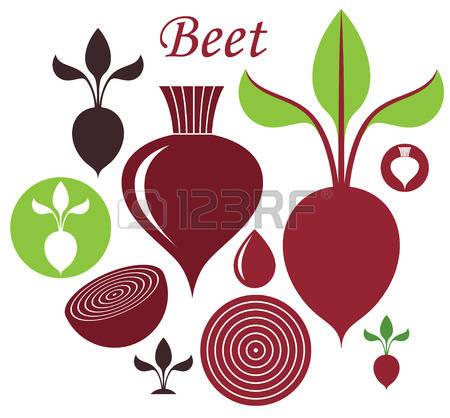 Beetroot clipart sugar beet Beets Beet collection Sugar Sugar