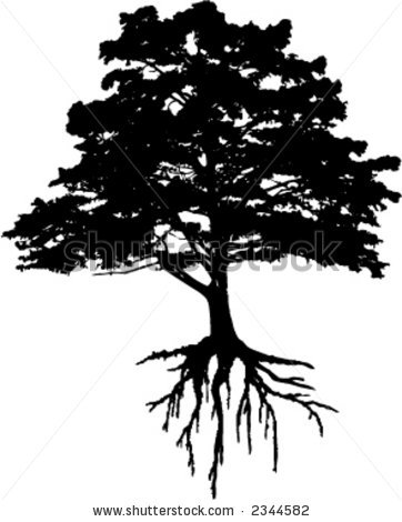Roots clipart tree illustration Roots More Ink Tree Art