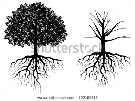 Roots clipart tree illustration Clipart with clipart and white