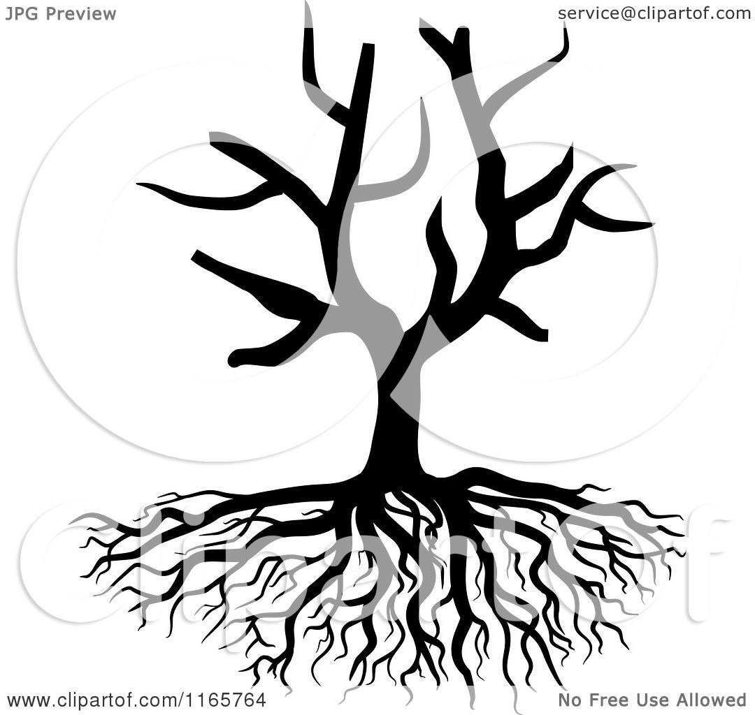 Roots clipart tree illustration And collection roots Illustrations with