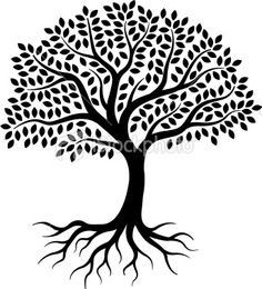 Roots clipart tree illustration Download tree photos silhouette Tree